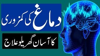 Dimagh Ki Kamzori Ka Ilaj | How To Increase Brain Power | Dimag Aur Hafiza Ki Kamzori Ka ilaj