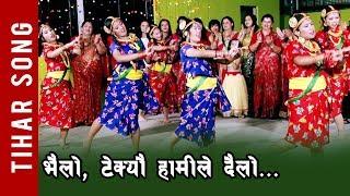 Tihar Song - Vailo Vailo || Deusi Bhailo Song 2075  || Bipana Dhital, Ranamaya Das