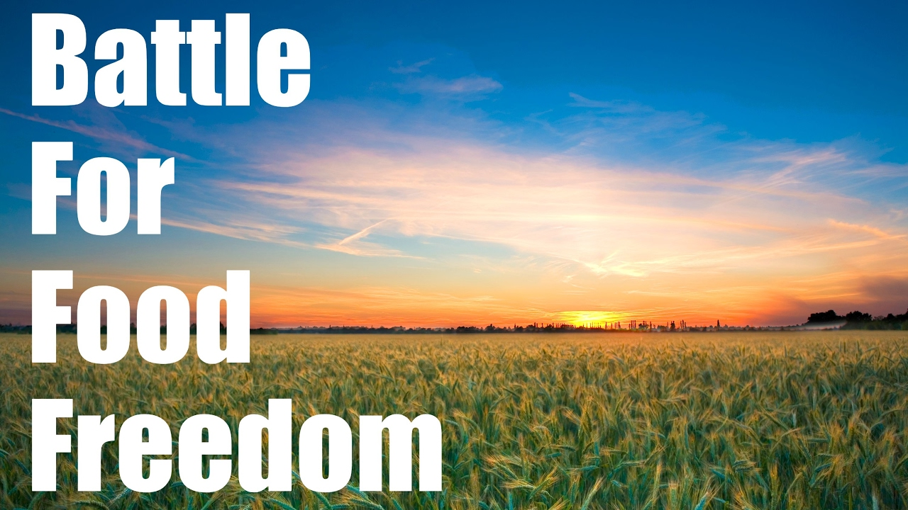 Image result for food freedom