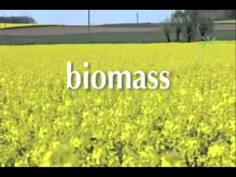 All About Biomass Fuels