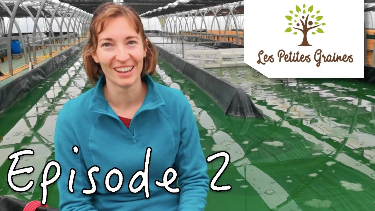 LPG#2 - ROSINE LECOMTE - Rosine et la Spiruline