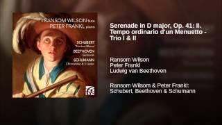 Serenade in D major, Op. 41: II. Tempo ordinario d