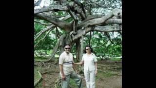 Chhod Aaya Tujh Ko  (Album:  Chala Chala India - Track 2) Artist: Dr. Sanjay Dalal
