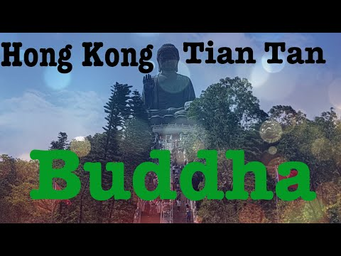 hong-kong-(part-one),-tian-tan-buddha,-the-second-largest-buddha-statue-in-the-world.