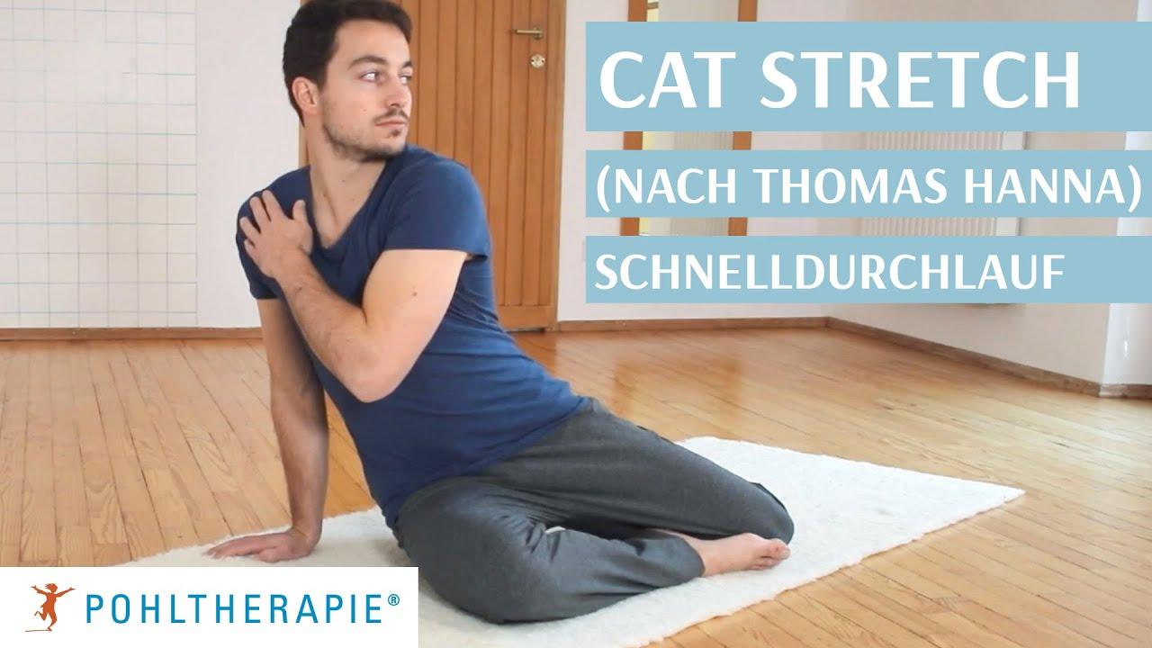 Cat Stretch Schnelldurchlauf (nach Thomas Hanna)
