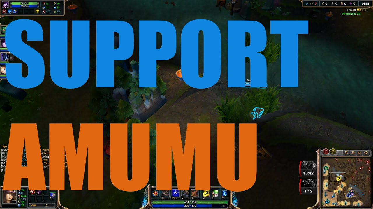 Amumu Support SO OP