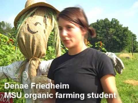 Michigan State University Student Organic Farm