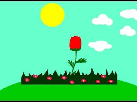 Animasi 2d 3d Proses Mekarnya Bunga Youtube