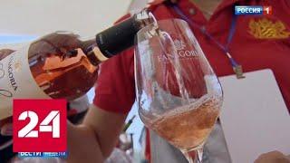 Шмурдяку - бой: законопроект и кино про вино - Россия 24