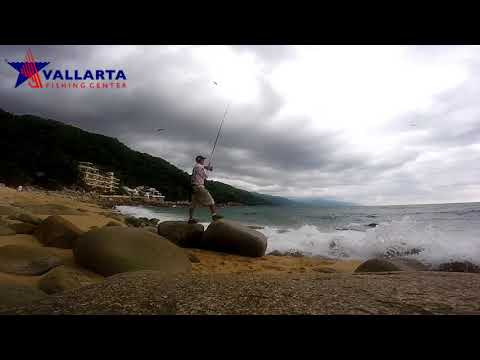 Top Water Lure Session