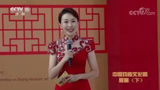 《过把瘾》 20191110 中国戏曲文化周展演(下)| CCTV戏曲