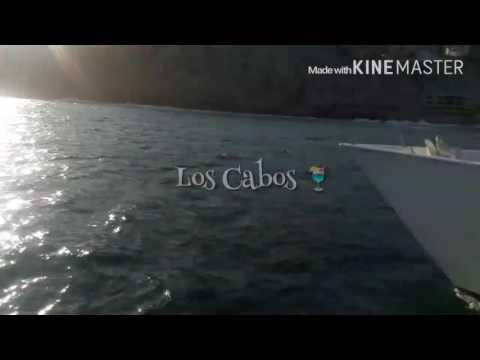 Los Cabos 2016 🏊 Paloma Faith - The Crazy Ones
