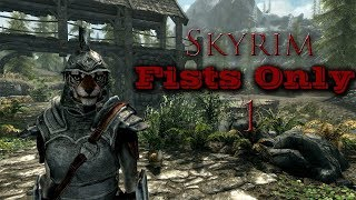 Video-Search for skyrim fists only