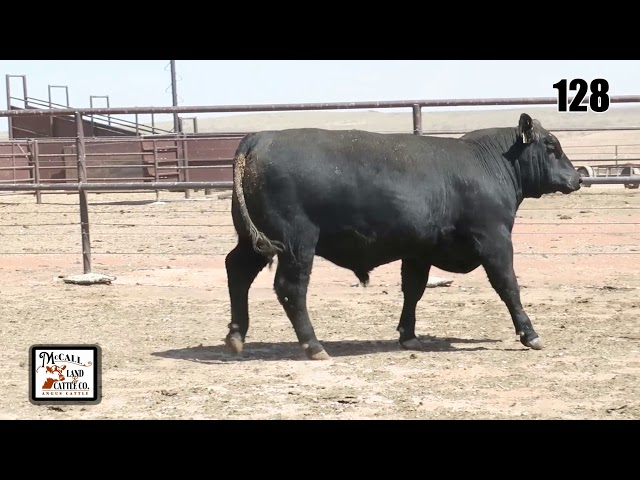 McCall Land and Cattle Lot 128