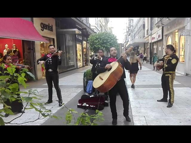 Mariachi de buenos aires - rancho grande - Tequila show