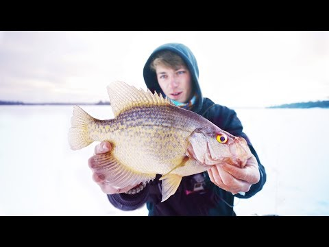 Fishing REMOTE Bush Lakes For Canadian Crappie -- (SURPRISE CATCH)