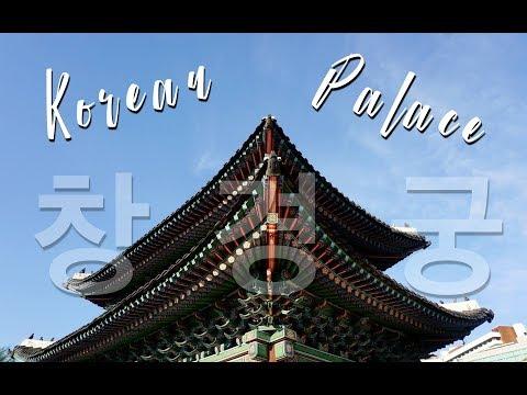 Changgyeonggung Palace, Sunday at Han River & Daily Student Life | SKKU FALL EXCHANGE 2017