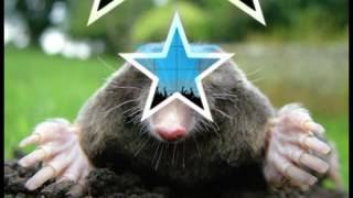 Mole Day Prject Chem