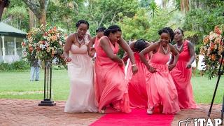Aaron & Charlene's Wedding Highlights & Dances