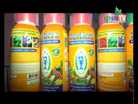 Green Clean Organic Nepal