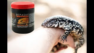 SUPPLEMENTS: When To Use Them For TEGUS?