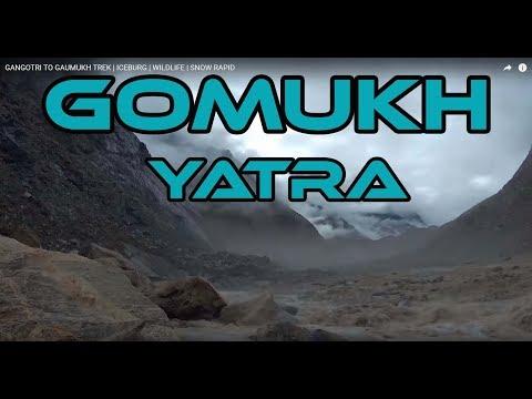 GOMUKH YATRA | गंगौत्री से गोमुख | ICEBURG | WILDLIFE | CHIRAG DELHI