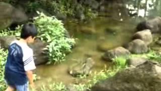 Ngintip Di Sungai
