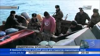 30 километров сетей и около 2 тонн осетровых изъято у браконьеров в Актау(На Каспии выявлены факты незаконной ловли осетра и красной рыбы. В ходе оперативно-профилактического мероп..., 2013-05-13T15:09:33.000Z)