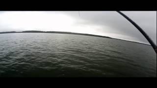Так ловят щуку Лучшие Рыболовы Года! Финал PAL 2014.