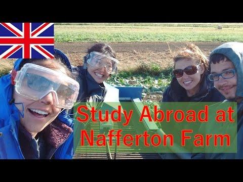 Study Abroad at Nafferton Farm
