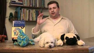 Dog Training Book - Should Your Dog Sleep On The Bed?