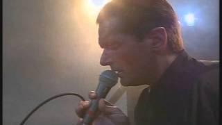 falco   jeanny live 93