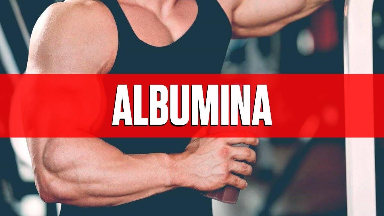 e06a7c20c Albumina - O que é e como tomar  - YouTube