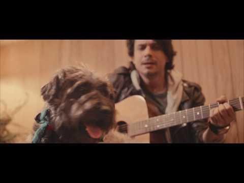 DIZEO - PERRO CORAZÓN (videoclip)