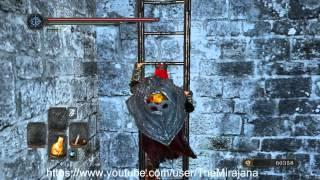 Dark souls 2: Башня Солнца - Подход к Башне Солнца