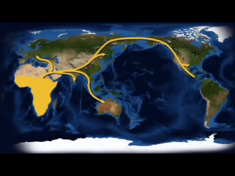 Human Migration : How Lice Can Shed Light on the Past - Science Nation