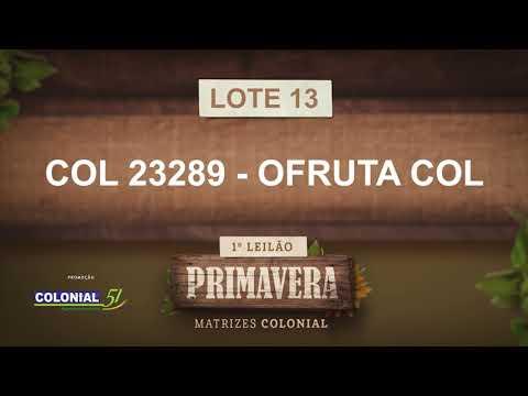 LOTE 13   COL 23289