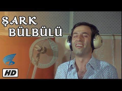 Şark Bülbülü - Türk Filmi (Kemal Sunal)
