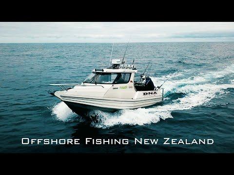 Overnight Offshore Fishing For Bluefin Tuna South Island West Coast New Zealand - Bluenose, Sharks