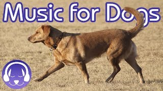 15 Hours of Classical Music for Dogs  Help your Dog Sleep FAST! (2019)