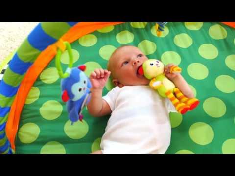 Sassy Pop Up Play Pod English | Toys R Us Canada