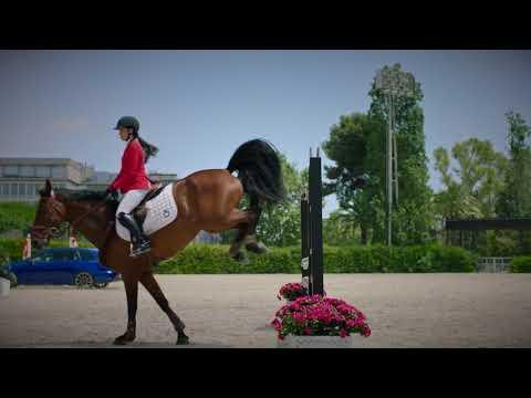 Seat сразился с лошадью на полосе препятствий