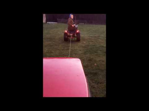 Willhorse tug-of-war with car winch