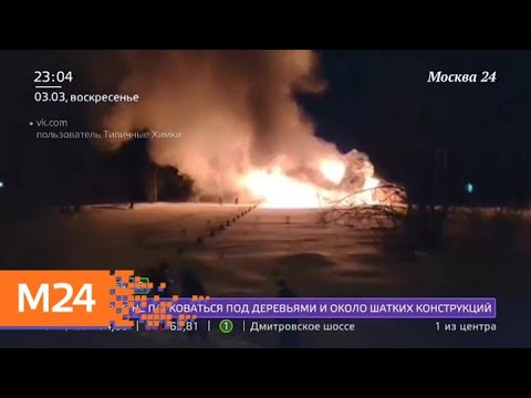 Площадь пожара в Куркине оценивается в 300 квадратных метров - Москва 24