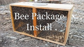 Installing Bee Package in 8 Frame Langstroth Hive