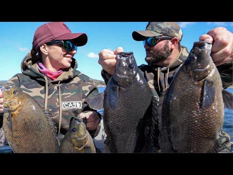 SOOTY GRUNTER | Fishing AUSTRALIA | Eungella Dam | Mackay Queensland