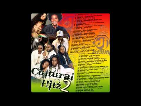 DJ Kenny - Cultural Hitz Vol. 2 (2008 Mix CD Preview)