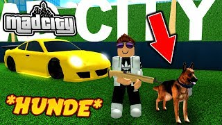 🐶 HUNDE IN MAD CITY ROBLOX