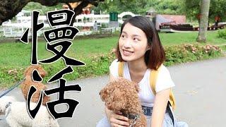 【台南旅遊/台南景點/台南文化】台南悠閒的慢活文化 -《拉之比遊台南》