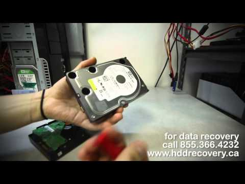 data recovery: clicking western digital WD5000AAKS